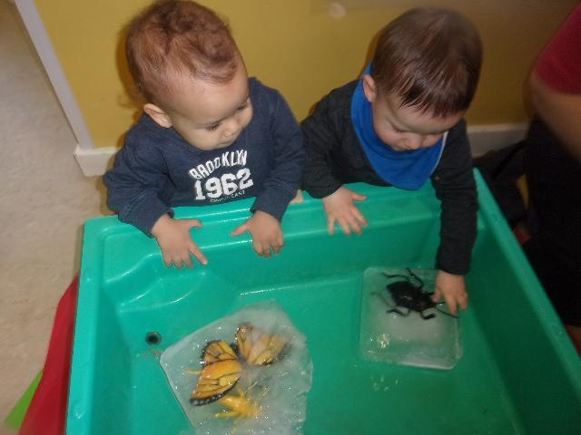 Sale nursery children explore winter and ice