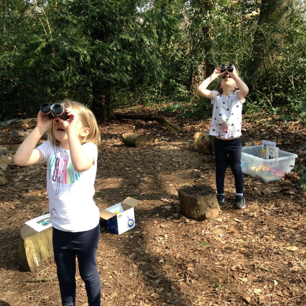 Brentwood nursery children embrace forest school session