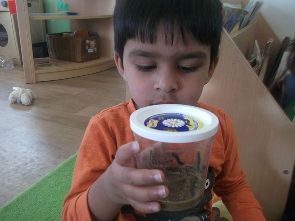 Banstead nursery children study butterfly life cycle
