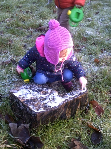 Frosty mornings at Horseshoe Day Nursery and Preschool in Esher