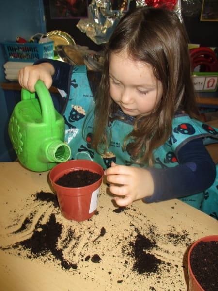 Green Gardeners at Millhouses Day Nursery and Preschool in Sheffield