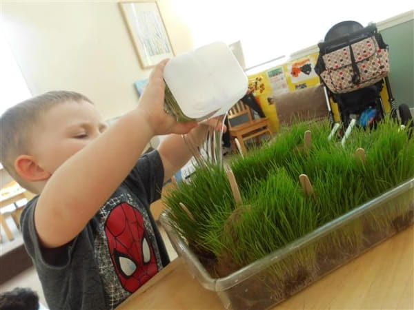 Growing cress at Elsie Inglis Day Nursery and Preschool