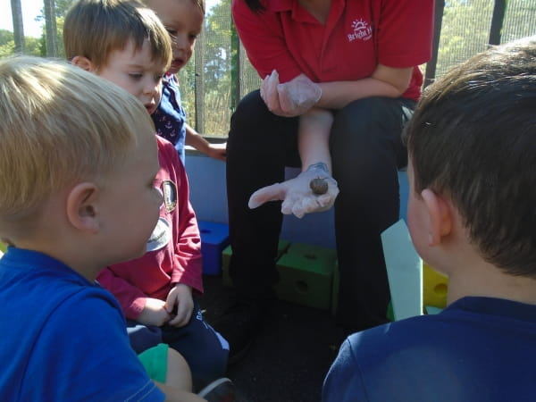 First Class Day Nursery and Preschool explore snails