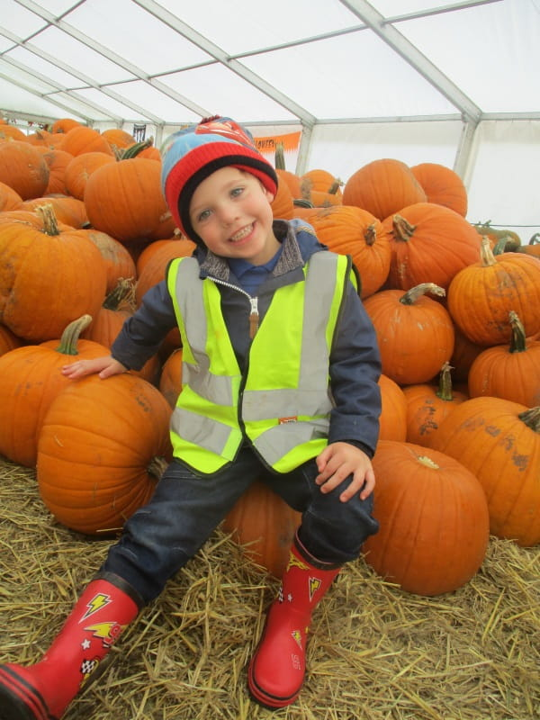 Kenilworth-pumpkin-farm