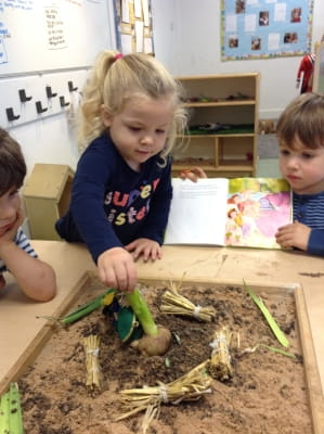 Growing Readers at Broadgreen Nursery