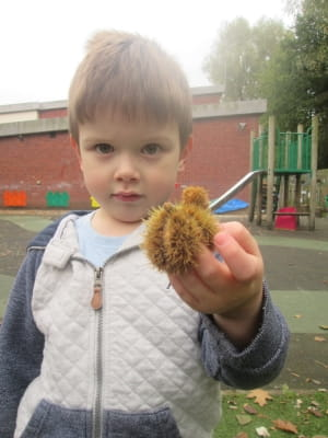 Autumn at Crewe Day Nursery and Preschool