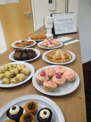 Triangle Nursery Cake Sale